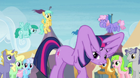 Twilight underneath her own wings at the exchange S4E22