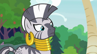 Zecora staring at Fluttershy and Angel S9E18
