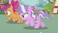 Crusaders gallop ahead of Diamond S5E18.png