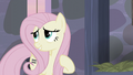 """Fluttershy """"their village is so pretty"""" S5E02.png"""