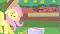 Fluttershy bumps into Pinkie Pie S1E25.png
