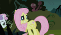 Fluttershy looks behind her in fear S1E17.png