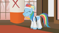 Rainbow Dash Black Belt S1E12