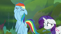 Rainbow Dash and Rarity about to vomit S8E17