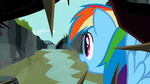 Rainbow Dash looking at the flyers S2E07