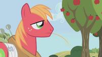 S01E04 Big Mac żuje źdźbło