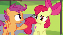"Scootaloo ""we can't let Rumble quit camp"" S7E21"
