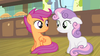 Sweetie and Scootaloo looking at each other S4E17