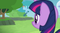 Twilight sees Rainbow flying away S4E10