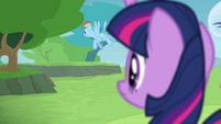 Twilight sees Rainbow flying away S4E10