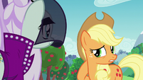 Applejack --while you were meetin' with-- S5E24