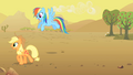 Applejack and Rainbow Dash S01E21.png