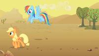 Applejack and Rainbow Dash S01E21