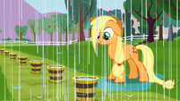 Applejack getting rained on S3E8