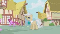 Berryshine running by the mayor S1E04
