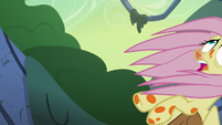 Fluttershy falling out of the trees S7E20