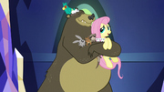 Fluttershy joins critter group hug S5E3