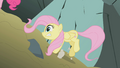 Fluttershy looses her footing S1E07.png