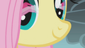 Fluttershy watches Pinkie jump over the cliff S1E07.png