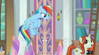 Photographer -this is for the history books!- S8E13