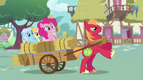 Pinkie Pie sad fillies cart Big Mac S2E18