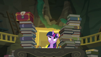 Princess Twilight Sparkle feeling lost EGFF