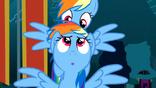 Rainbow Dash and Rainbow Dash