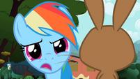 Rainbow Dash cutesy wootsie S2E7