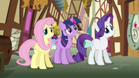Rarity & Fluttershy shaking heads S3E7