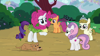 Rarity remorsefully approaches Sweetie Belle S7E6