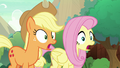 AJ and Fluttershy completely awestruck S8E23.png