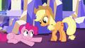 Applejack tells Pinkie to calm down S5E3.png