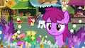 Berryshine approaching the flower stand S7E19.png