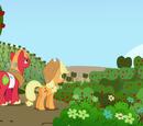 Сбор урожая/Галерея
