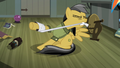 Daring applying bandage to her hoof S4E04.png