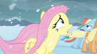 Fluttershy freaking out S3E1