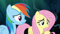 Fluttershy giving advice to Zephyr Breeze S6E11.png