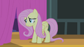 Fluttershy looking out curtains S4E14.png
