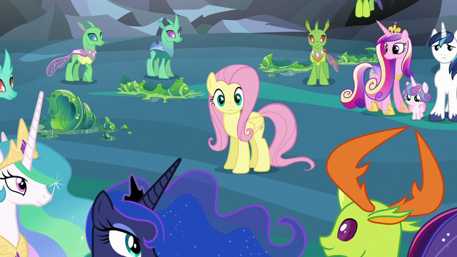 File:Fluttershy suddenly the center of attention S6E26.png