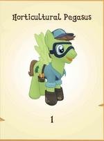 Horticultural Pegasus MLP Gameloft