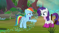 "Rainbow ""out of the Wonderbolts for weeks"" S8E17"