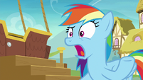 Rainbow Dash -seriously-!- S8E5