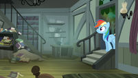 Rainbow Dash walking into Daring's house S4E04