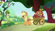 S01E10 Applejack przywiozła wóz jabłek dla Fluttershy