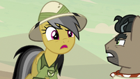 "Daring Do ""not so fast, Caballeron!"" S7E18"
