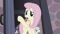 Fluttershy -they were right over there!- S5E2