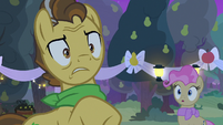 Grand Pear faced with a difficult decision S7E13