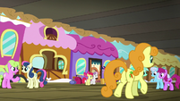 Ponies about to board the Friendship Express S8E6