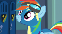 Rainbow Dash looking at the photos S8E5