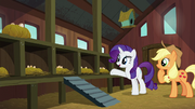 Rarity presents empty chicken coop to Applejack S6E10
